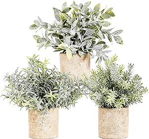 YCS Mini Eucalyptus Plants MiniPotted Plants Artificial Flocked 3 PackSmall Houseplants Mini Potted FakePlants Artificial Plastic Eucalyptus Plants for Home Office Desk RoomDecoration …