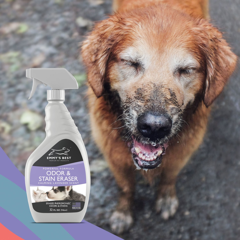 Amazon Emmy s Best Powerful Pet Odor Remover & Urine
