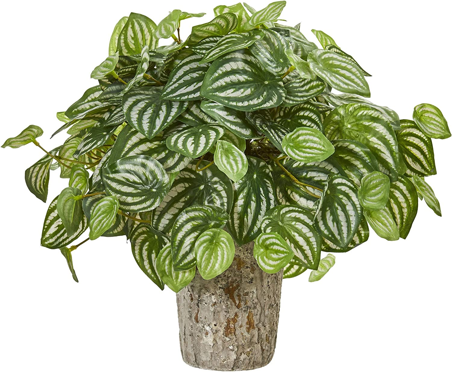 Artificial peperomia bush
