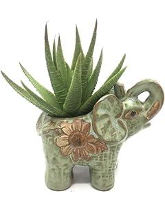 Cute Succulent Planter Animal Turtle Shaped Flower Pot Decor Home Office Desk❤