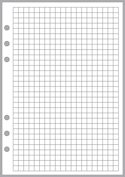 A5 Size Graph Paper Refill Sized And Punched 6 Ring Notebooks By Filofax