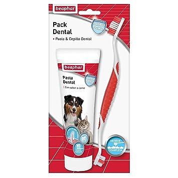 Beaphar Pack Dental con Pasta y Cepillo Dental: Amazon.es ...
