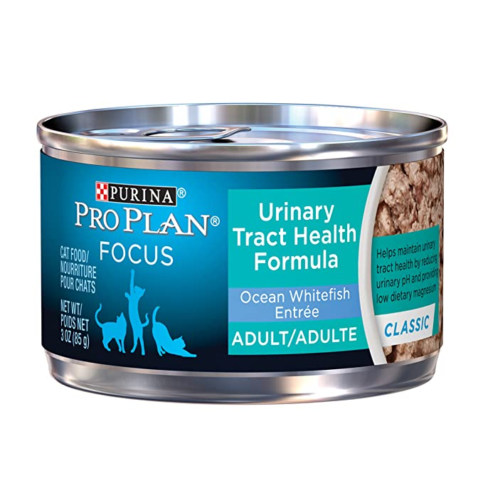 Amazon.com : Purina Pro Plan Focus Urinary Tract Health Formula Classic Ocean Whitefish Entree Adult Wet Cat Food - (24) 3 Oz. Pull-Top Cans : Pet Supplies