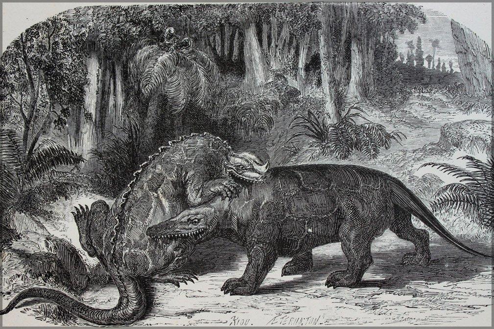 Amazon|Iguanodon Battling Meg...