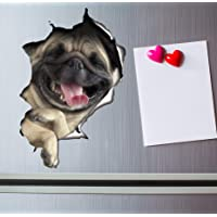 Winston & Bear 3D Cat Stickers - 2 Pack - Laughing Pug Decals for Wall - Stickers for Bedroom - Fridge - Toilet - Room…