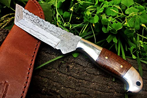 DKC Knives 60 5 18 SALE DKC-42 OTTER Damascus Steel Knife Hunting Tanto Fixed Mahogany Micarta 9 Long, 5 Blade 10oz Very Solid Knife