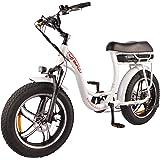 DJ Super Bike Step Thru 750W 48V 13Ah Power Electric Bicycle, Pearl White, LED Bike Light, Suspension Fork and Shimano…