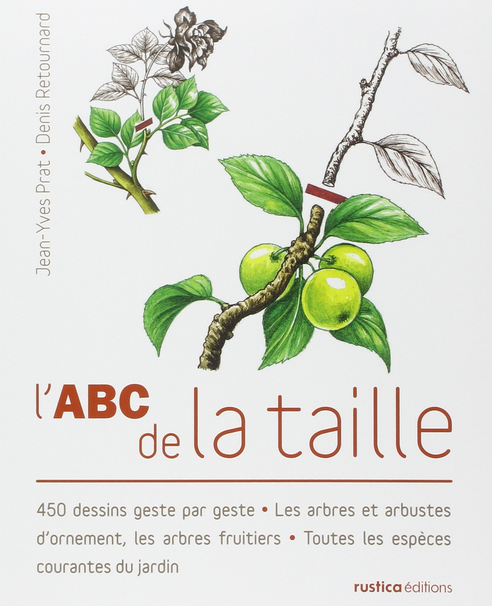 quand tailler les fruitiers great taille des arbres fruitiers with quand tailler les fruitiers. Black Bedroom Furniture Sets. Home Design Ideas