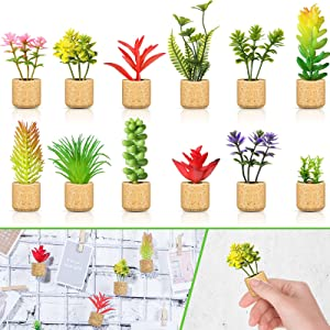 12 Pieces Mini Artificial Succulent Plants Refrigerator Magnets for Shelf Kitchen Counter Office Decor Tiny Miniature Desk Plant Decoration (Wall Hanging or Lay Flat)