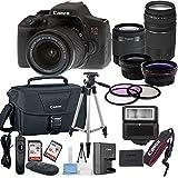 Canon EOS Rebel T6i Digital SLR Camera w/ EF-S 18-55mm IS STM + 75-300mm Zoom Lens Bundle includes Camera, Lenses, Filters, Bag, Memory Cards, Tripod, Flash and More - International Version