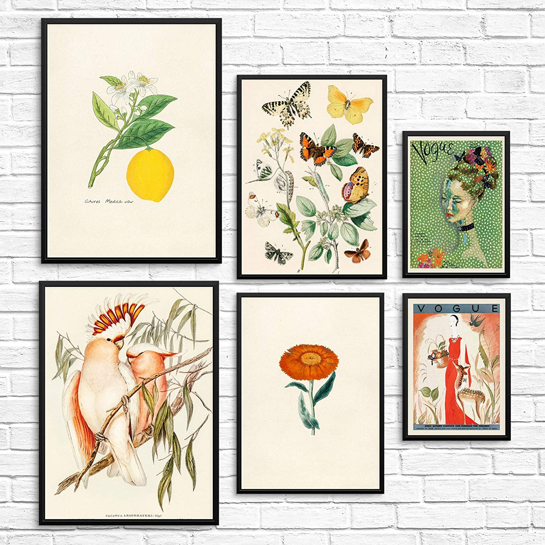 à couper le Souffle  Mot-Clé Vintage Wall Art Prints Botanical Posters UNFRAMED Trendy Home Decor for  Living Room Kitchen Dining Room OPTION 32