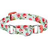 Blueberry Pet 6 Patterns Spring Scent Inspired Rose Print Safety Training Martingale Dog Collar, Turquoise, Large, Heavy Duty Adjustable Collars for Dogs