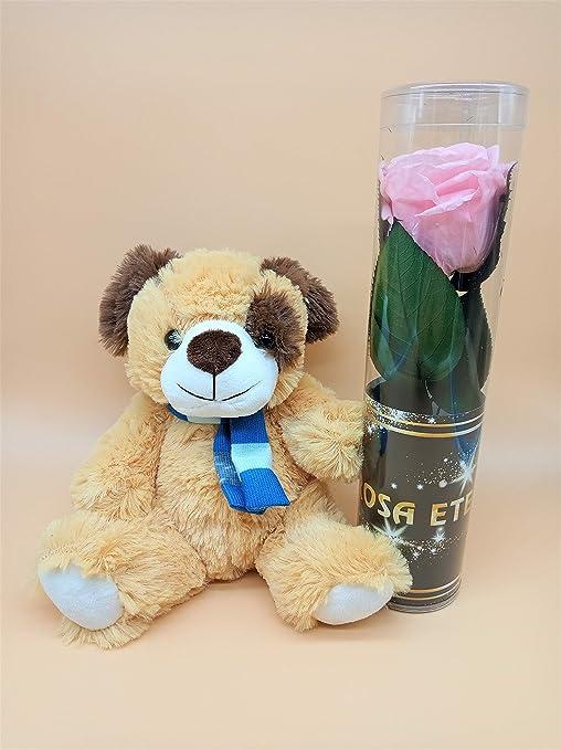 Eternaflor Rosa Color Rosa Light Extra con Peluche. Gratis TU ENVÍO. Rosa PRESERVADA Color Rosa Extra con Peluche. Tarjeta dedicatoria y Envoltorio de Regalo. Hecho en España.: Amazon.es: Hogar