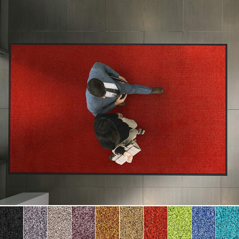 Etm Hochwertige Fußmatte   bewährte Eingangsmatte in Gewerbe & Haushalt   Schmutzfangmatte mit Top-Reinigungswirkung   Sauberlaufmatte waschbar & Rutschfest   Vielen Größen (120x300 cm, Lila) B07NSC58G2 Fumatten