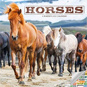 Horses Calendar 2021 Bundle - Deluxe 2021 Horses Wall Calendar with Over 100 Calendar Stickers (Horses Gifts, Office Supplies)