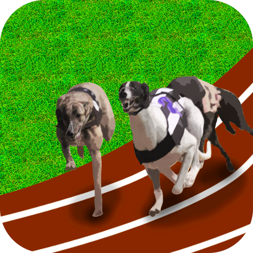 Racing : Dog Runner Racing 2018