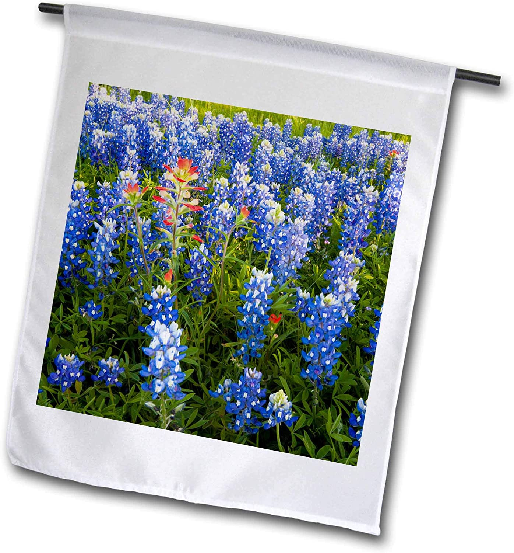 3dRose Danita Delimont - Flowers - Texas Bluebonnet Flowers in Bloom, Central Texas, USA - US44 LDI0789 - Larry Ditto - 18 x 27 inch Garden Flag (fl_146914_2)