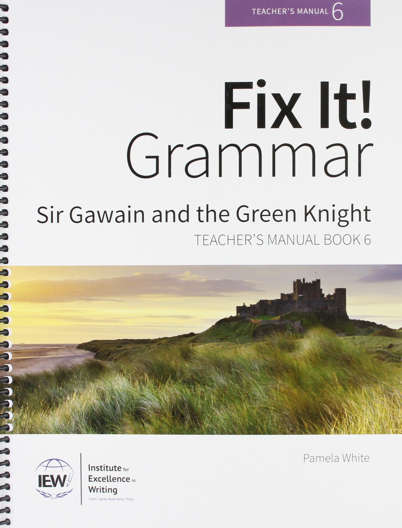 Fix It! Grammar: Sir Gawain and the Green Knight [Teacher's Manual Book 6] pdf