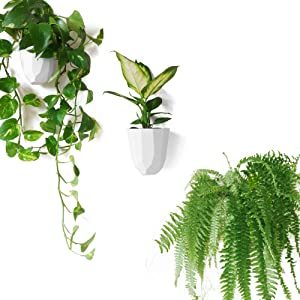 Geometric Wall Planters - Lightweight and Easy To Install - for Succulents, Houseplants - Design Your Own Vertical Garden - Melamine Plastic - Set of 3
