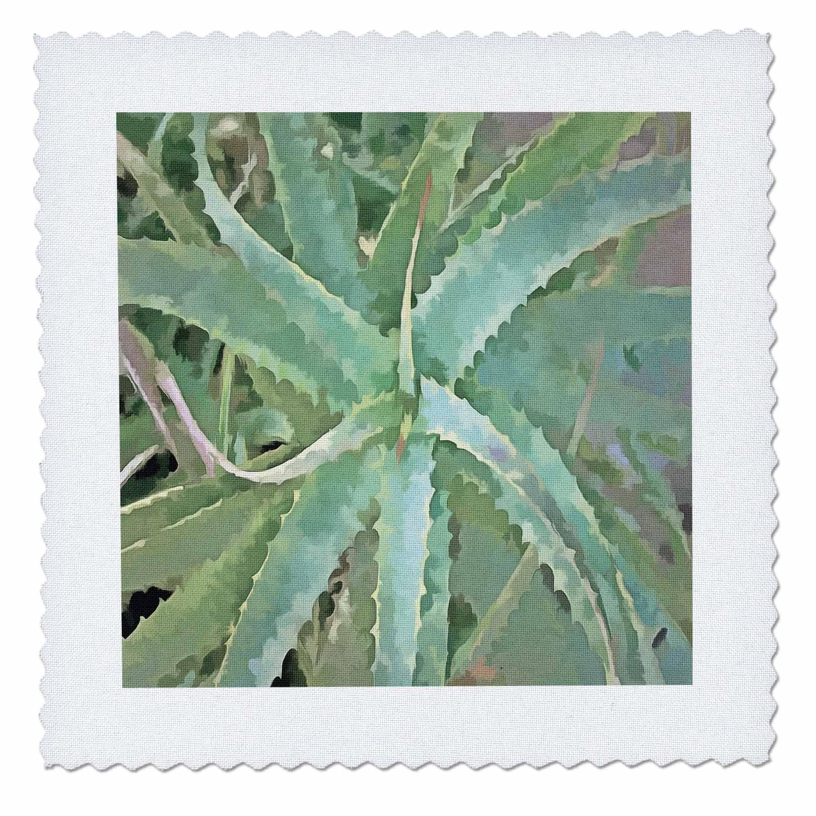 3dRose Taiche - Acrylic Painting - Aloe Vera - Amazing Aloe Vera - 12x12 inch quilt square (qs_260789_4)