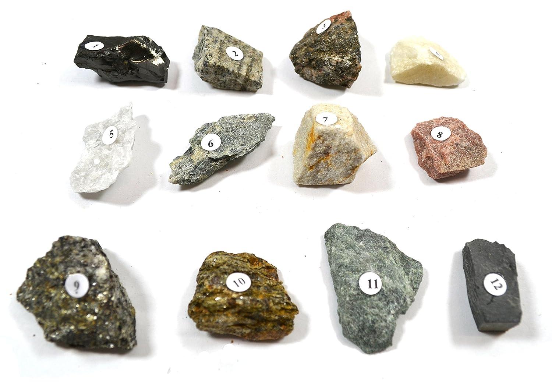 eisco rocas metamórficas Kit - contiene 12 muestras (aprox ...
