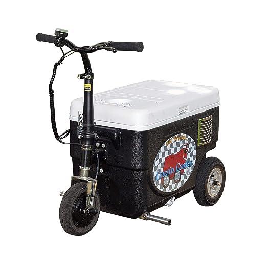 Cruzin Cooler CZ-HB - Patinete de Hielo motorizado básico, 9 ...