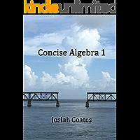 Concise Algebra 1: Master Algebra 1 with 30 Hours of Self Study