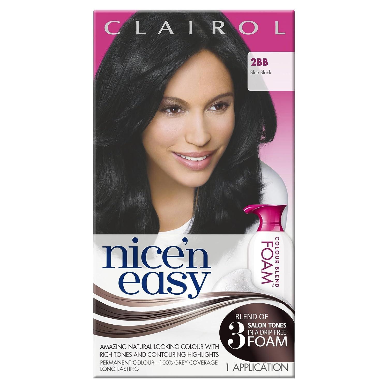 Clairol Nicen Easy Colour Blend Foam Permanent Hair Colour Blue