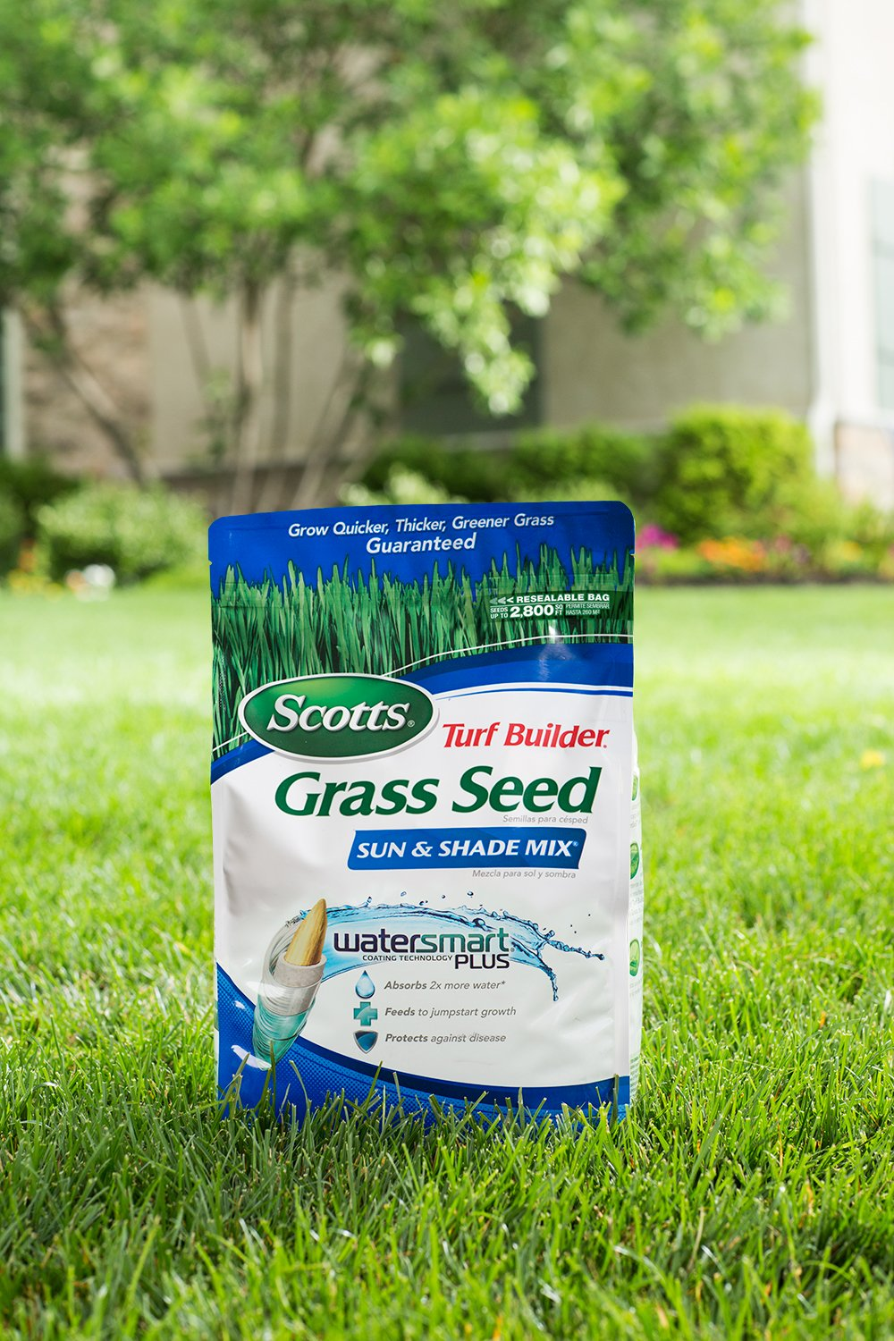 Amazon: Scotts Turf Builder Grass Seed  Sun And Shade Mix, 7pound  (not Sold In Louisiana): Patio, Lawn & Garden