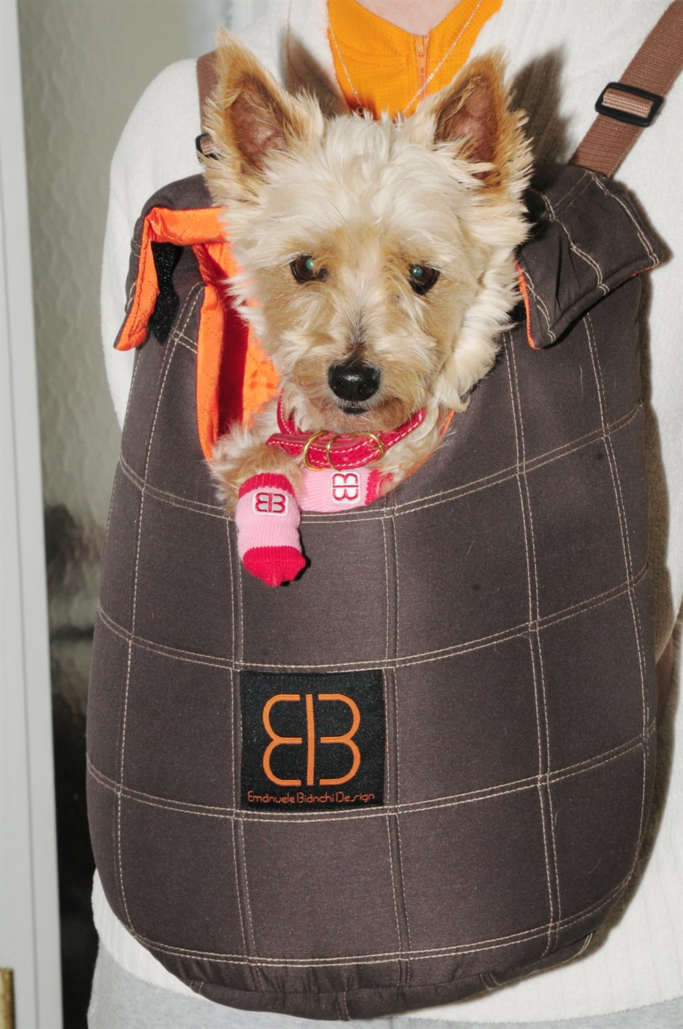 Pet Ego Lenis Pack Pet Carrier Backpack by Emanuele Bianchi