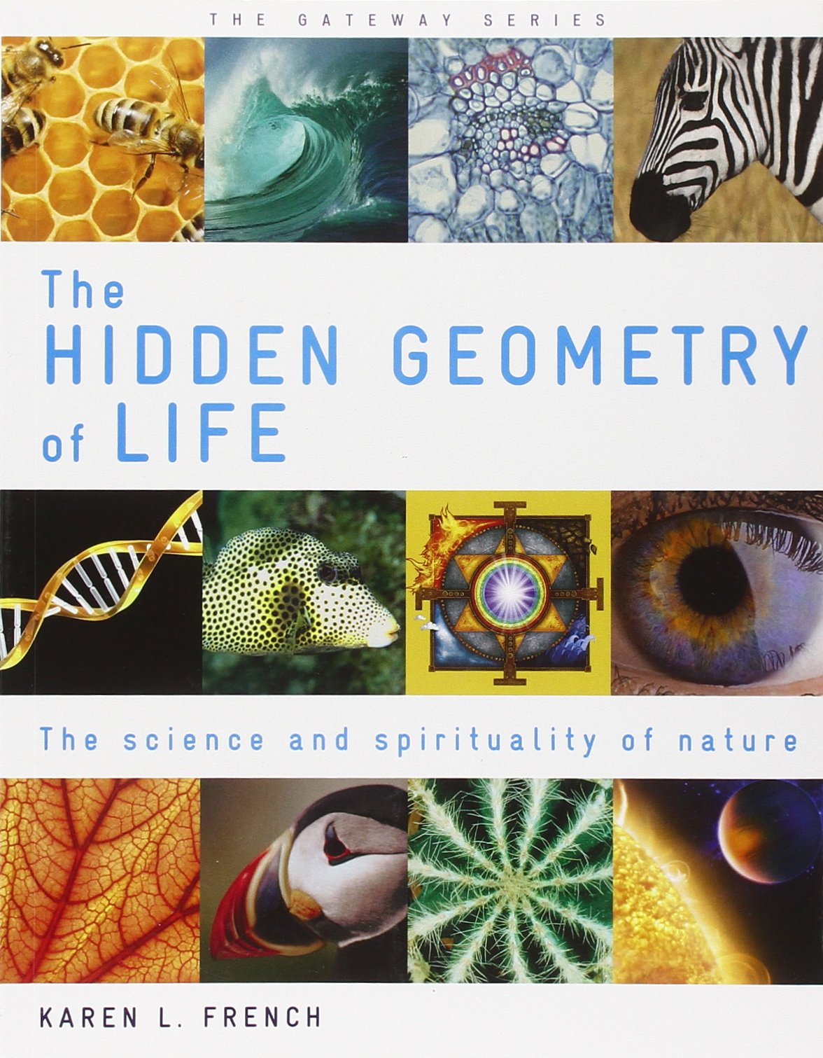 Image result for the hidden geometry of life