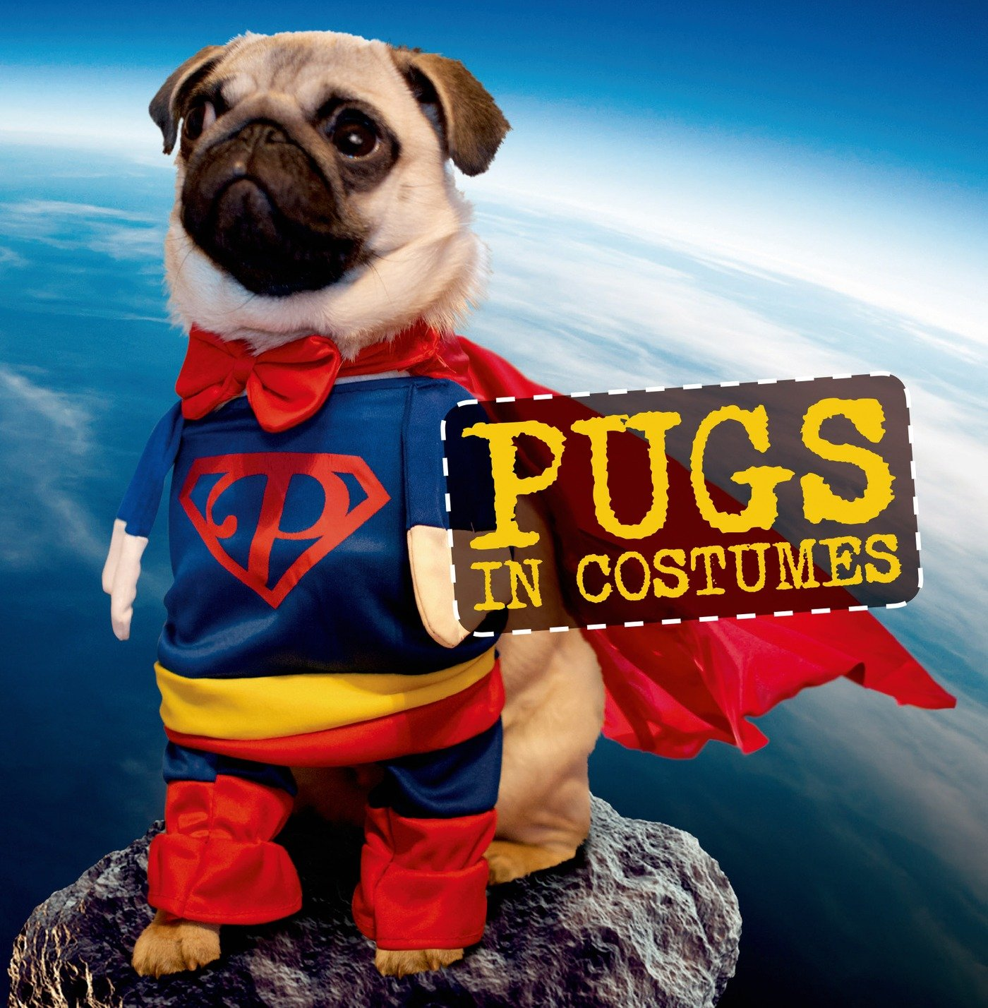 Amazon com: Pugs in Costumes (9781250075758): Virginia Woof