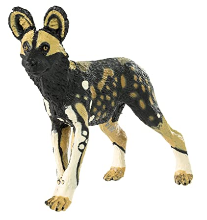 7a155f4e5844 Amazon.com: Safari Ltd Wild Safari Wildlife African Wild Dog: Toys ...