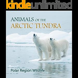 Animals of the Arctic Tundra: Polar Region Wildlife: Animal Encyclopedia for Kids (Children's Explore Polar Regions…