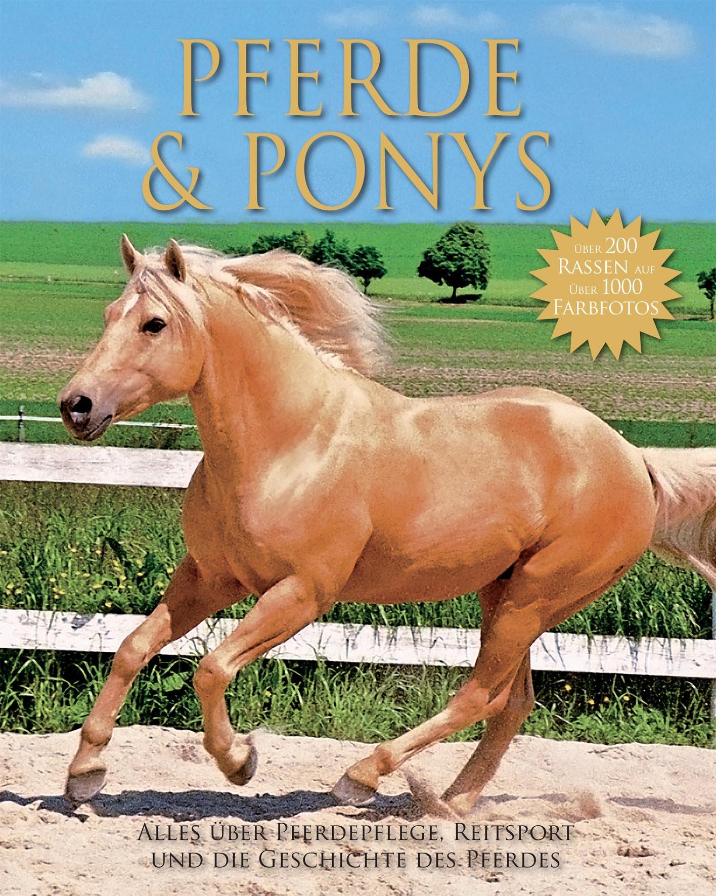 Pferde und Ponies: Alles über Pferdepflege, Reitsport und die Geschichte des Pferdes