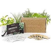 Pack 6x Semillas Plantas Aromáticas y Culinarias - Semillas Orgánicas de España - 6x Marcadores de Bambú - Manual de…