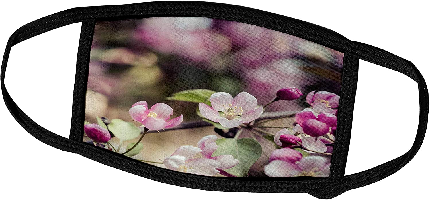 3dRose Detail of crabapple Tree in Bloom. Stylized Photo, Pastel Colors - Face Covers (fc_288801_2)