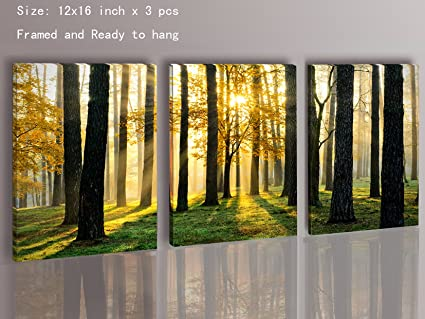 Amazon.com: Canvas Prints 3 Panels Framed Ready to Hang Modern ...