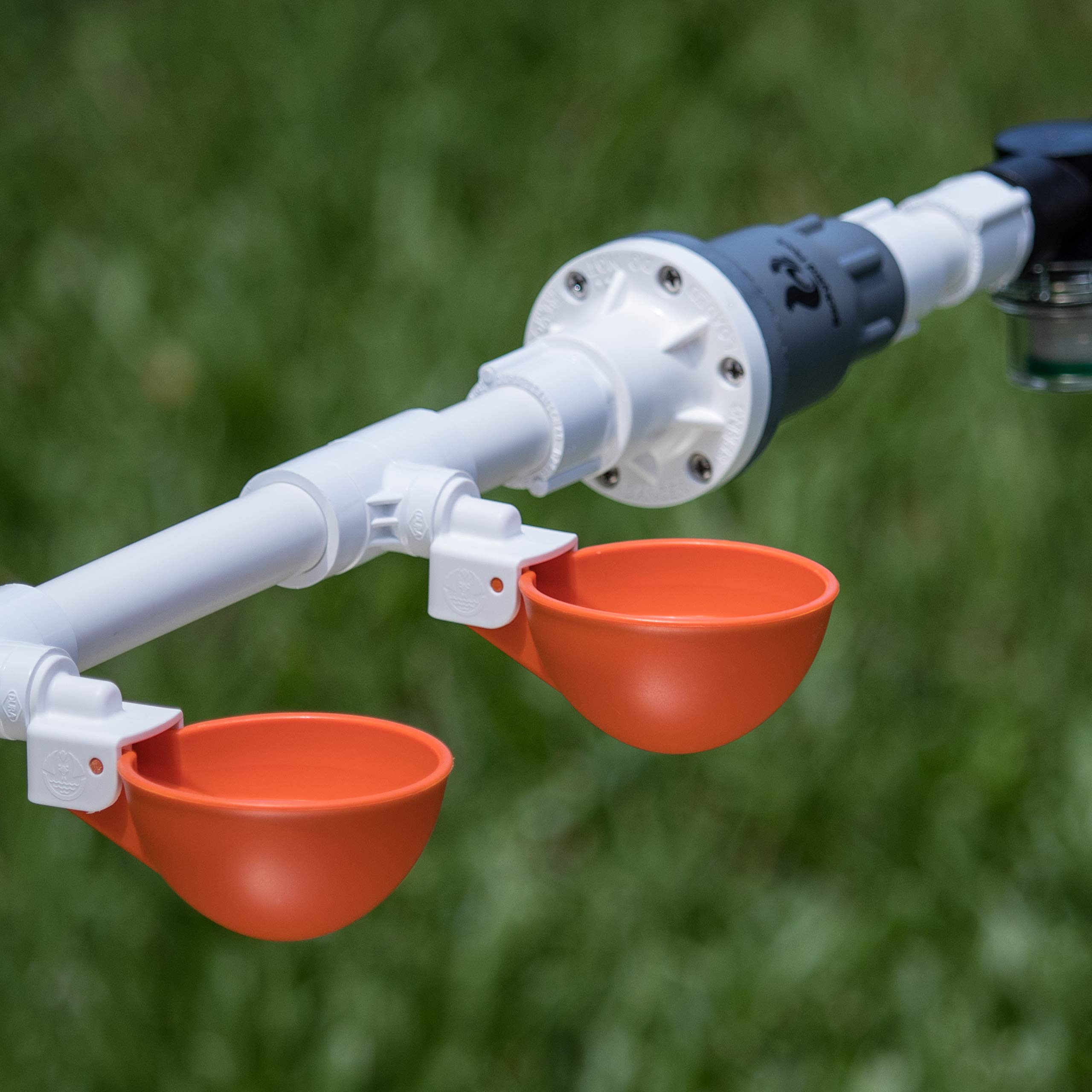 Backyard Flock 4 Cup Oasis Poultry Watering System for Household Water Lines. Automatic Chicken Waterer Kit - Orange by Backyard Flock