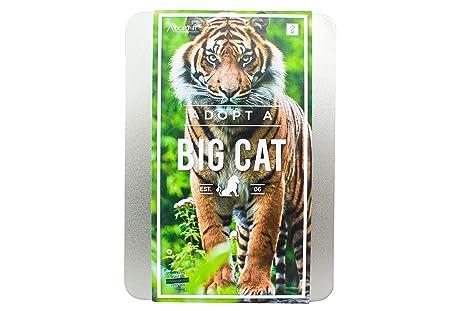 Gift Republic ltd GR100024 - República veneno personalícelo: adopte una caja de regalo grande gato