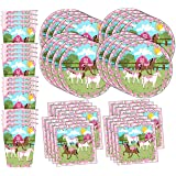 Amazoncom Heart My Horse Pink Birthday Party Supplies Set Plates