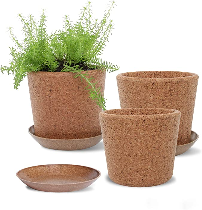 """Wild Pact Set of 3 Cork Plant Pots (Large Grain) - 5.5"""" + Rice Hull Saucers - Drainage Hole - Garden Planters for Indoor and Outdoor Flowers, Herbs, Succulents (Large Grain)"""