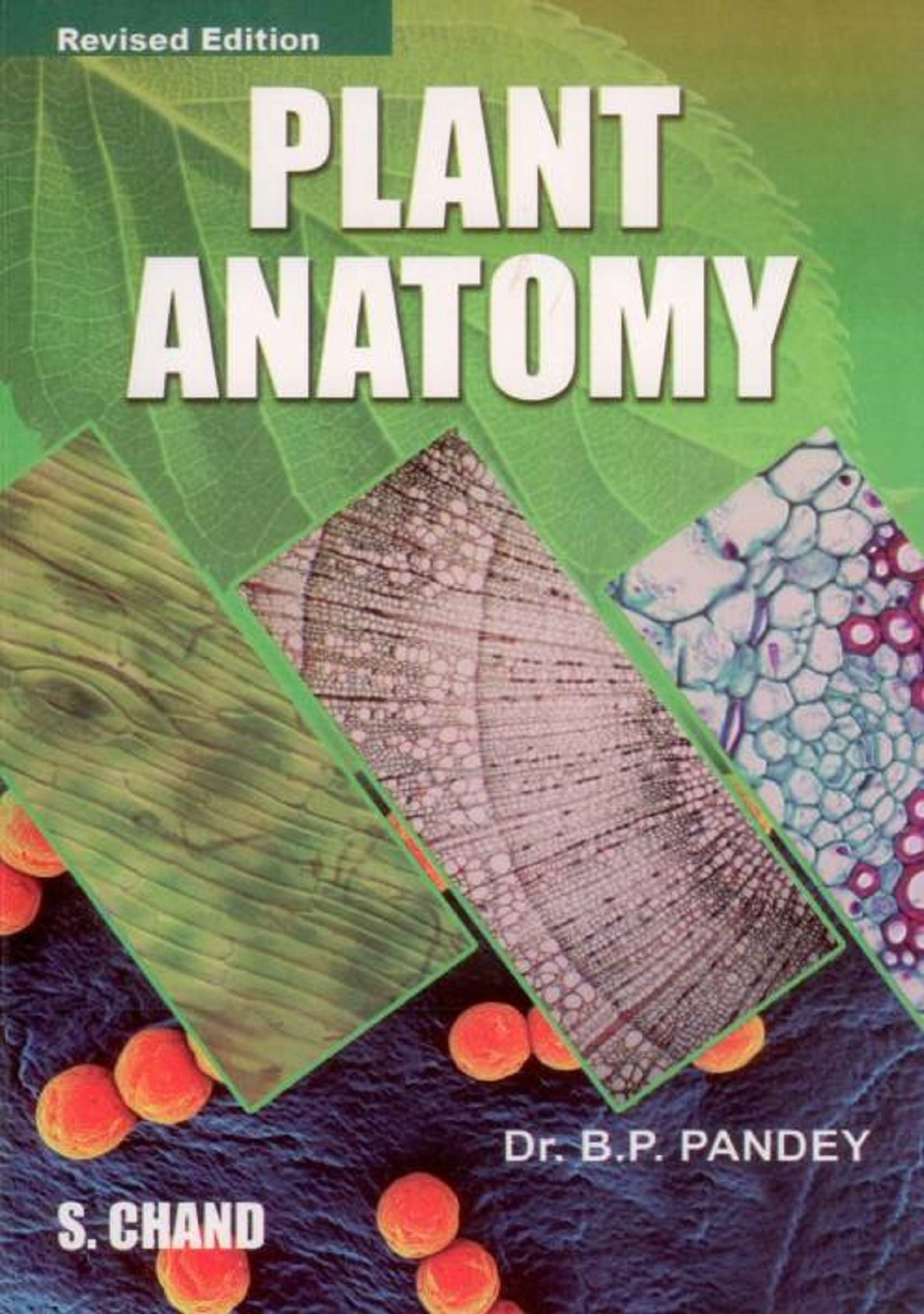 Buy Plant Anatomy Book Online at Low Prices in India | Plant Anatomy ...