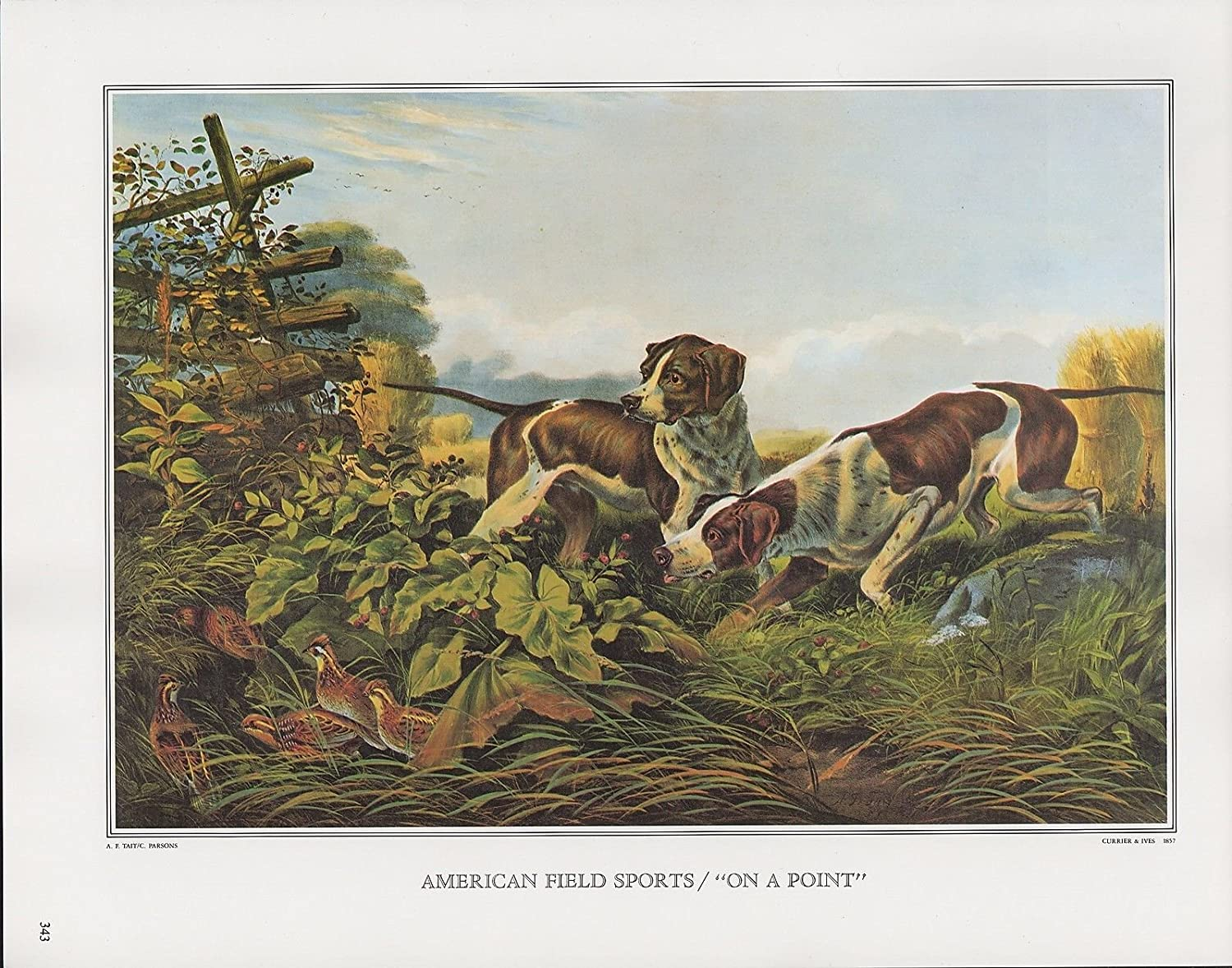 FOXHOUND DOGS AT REST LOVELY VINTAGE STYLE DOG ART PRINT MATTED