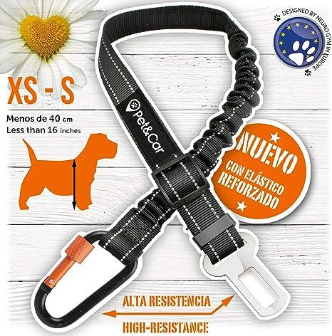 PET & CAR Cinturón de Seguridad Extensible para arnés de Perro ...