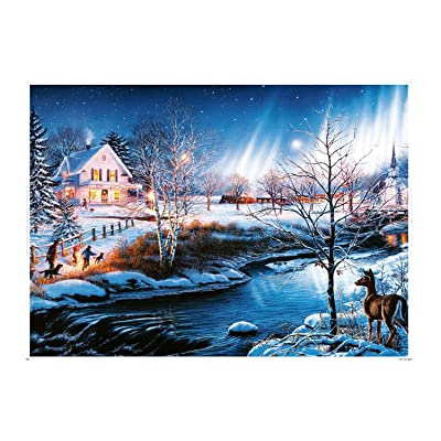 TNO 1000 Pieces Jigsaw Puzzles for Adults, Themes Puzzle Sets for Family, Cardboard Puzzles, Educational Games, Brain Challenge Puzzle for Kids Childrens-Snow Night Aurora: Toys & Games