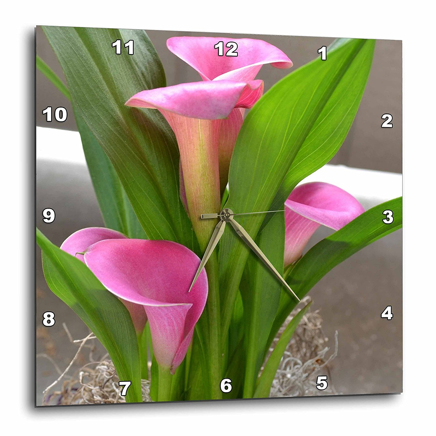 3dRose dpp_40237_2 Pretty Pink Calla Lily Flowers-Floral Photography-Wall Clock, 13 by 13-Inch by 3dRose