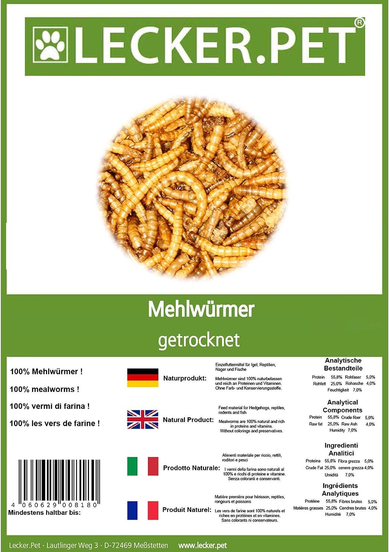 Mehlw/ürmer getrocknet Fischfutter Nager im Eimer Lecker.Pet/® 4 x 5 L Liter
