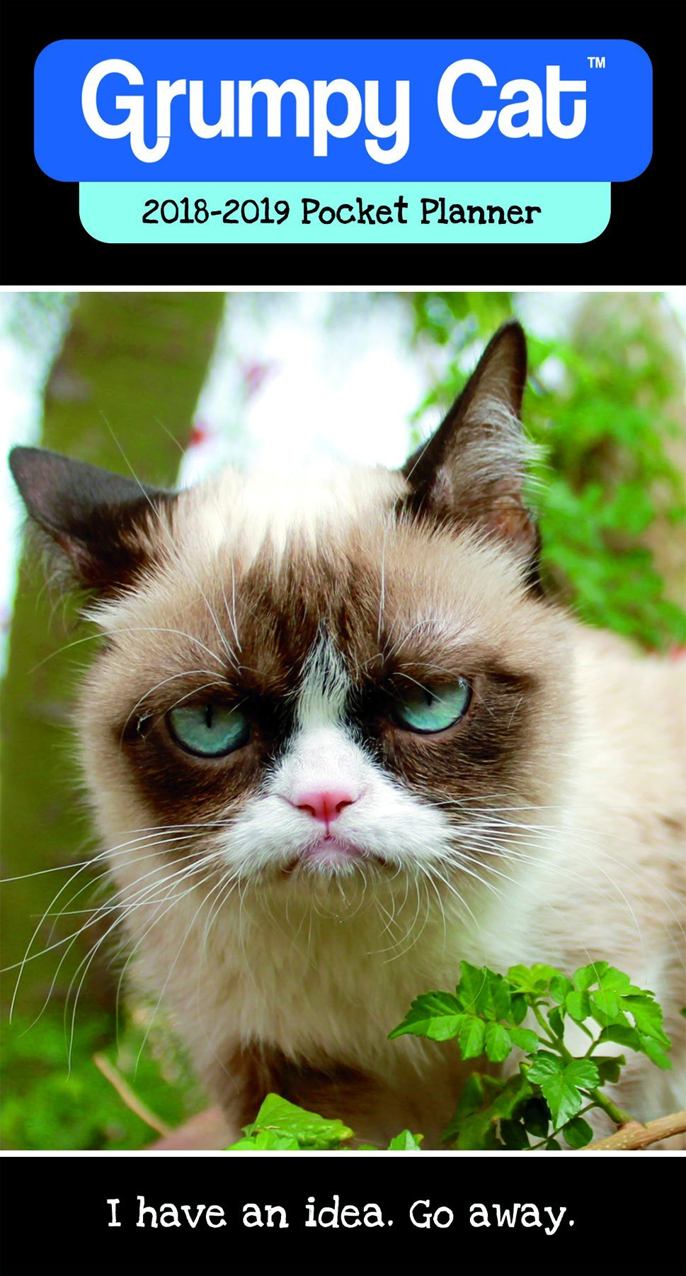 Download Grumpy Cat 2018 Pocket Planner pdf