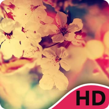 Amazon Com Sakura Hd Wallpapers Appstore For Android